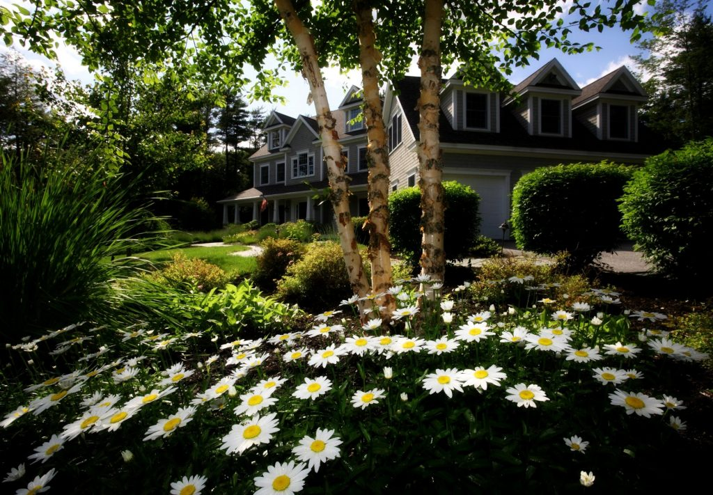 House With A Beautiful Garden